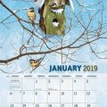 Birdhouses 2019 Lang Kalender_3