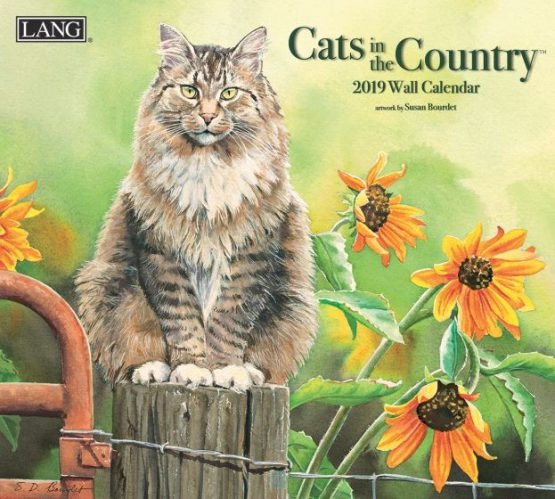 Cats In The Country 2019 Lang-Kalender