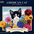 American Cat 2019 Lang Kalender